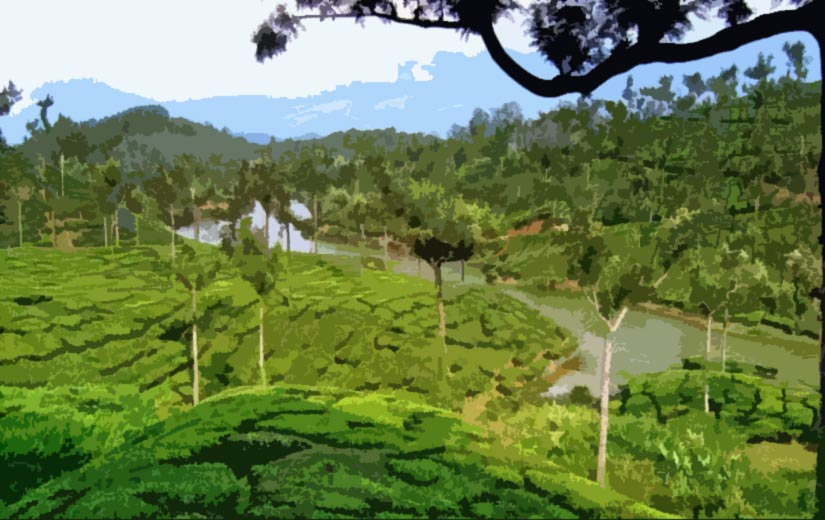 Kerala tour with flights