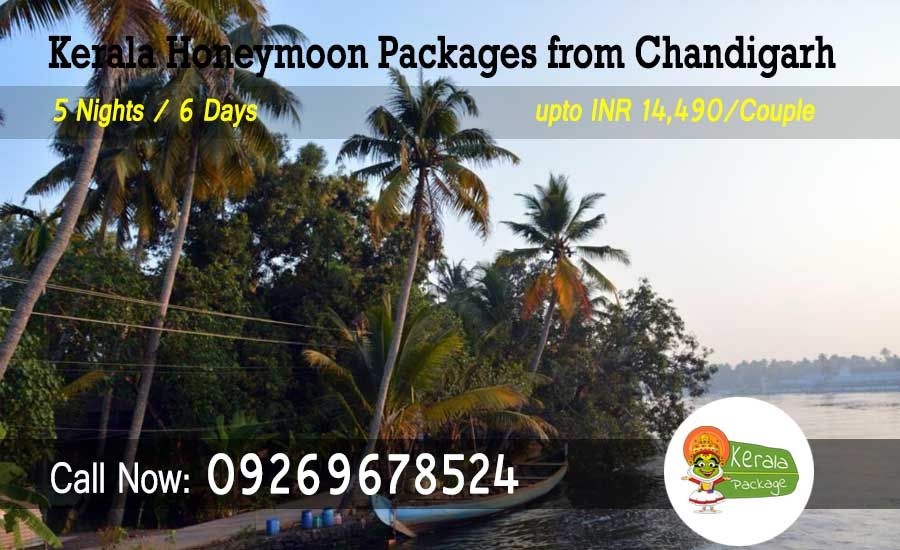 Kerala Honeymoon Packages from Chandigarh