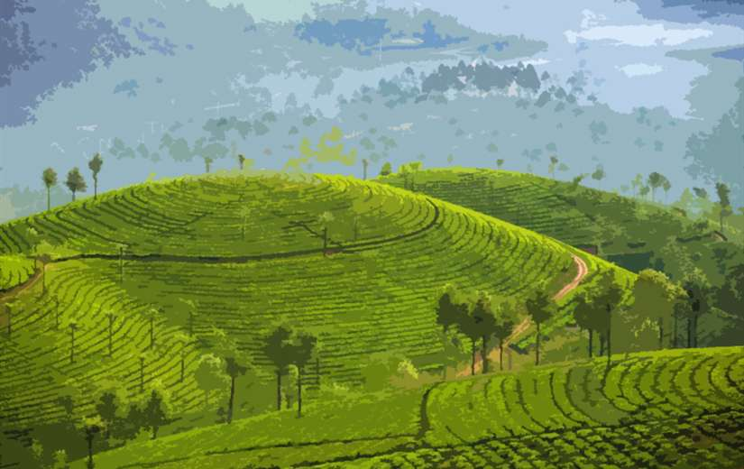 Kerala tour packages 4 nights 5 days