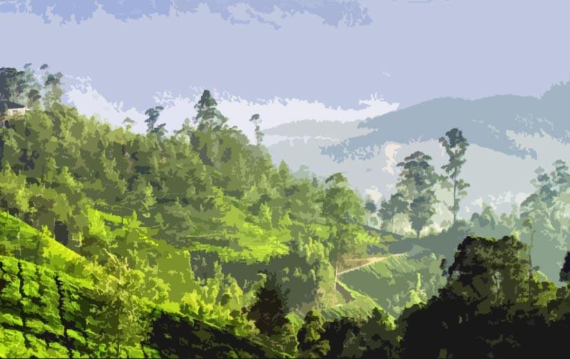 Kerala tour package from Bhubaneswar