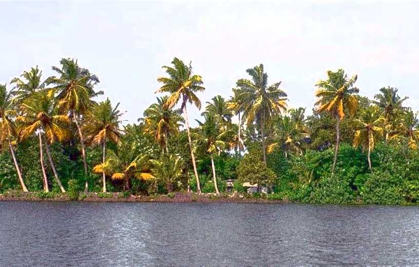 Kerala tour 10 days packages