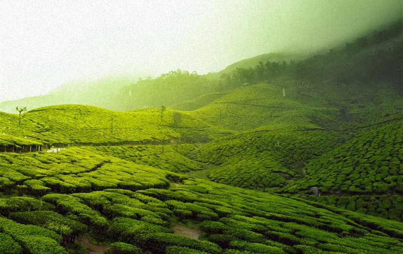 Salem to Kerala tour packages
