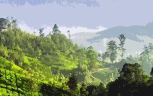 Tourist Places Kerala 5 days