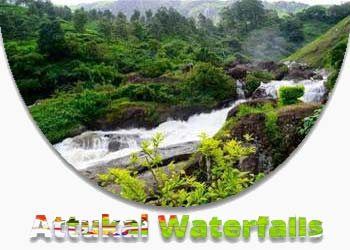 Attukal Waterfalls Munnar