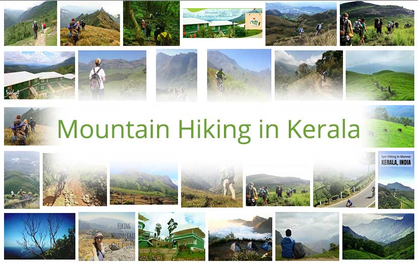 Mountain Hiking in Kerala