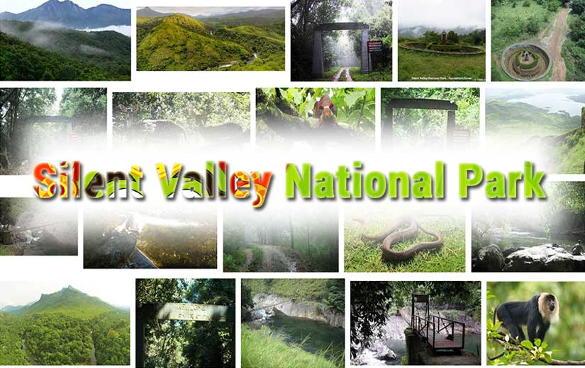 Silent Valley National Park Kerala