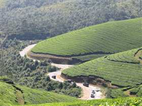 Munnar Photo 1