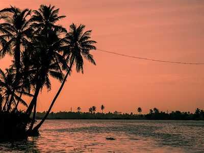Kochi Image 1