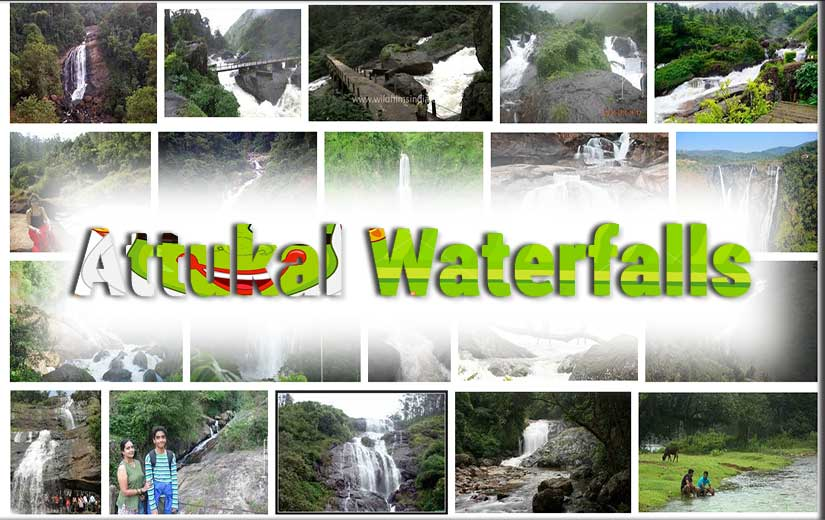 Attukal waterfalls in Kerala