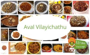 Aval Vilayichathu