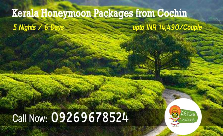 Kerala honeymoon packages from Cochin