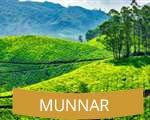 Munnar Kerala India