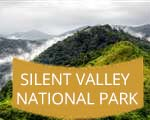Silent Valley National Park Kerala India