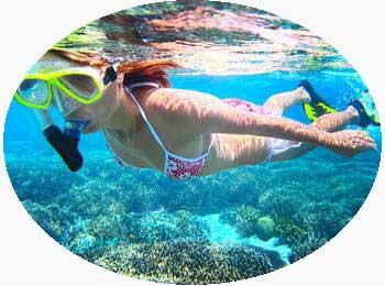 Snorkeling in Kerala India