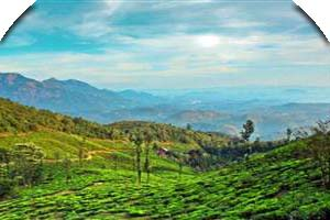 Thekkady Alleppey Tour Package