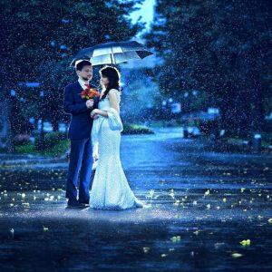 Kerala Best Honeymoon - 3 Days 2 Nights