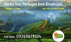 Ernakulam to Kerala tour packages